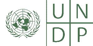 UNDP logo white