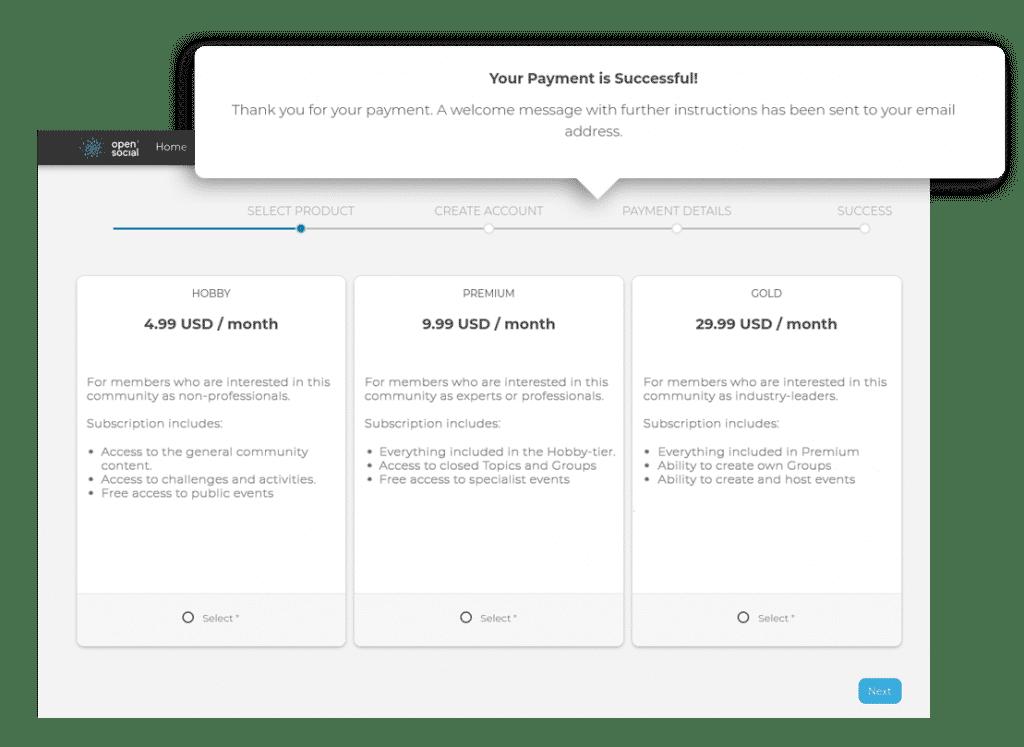 Monetization subscription process