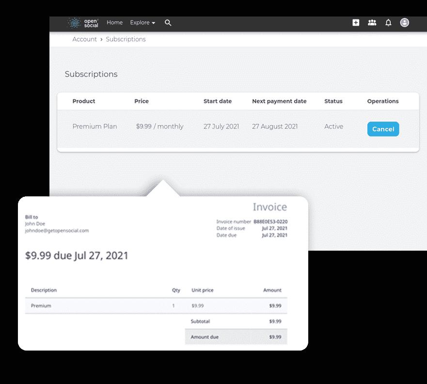 Monetization payment process