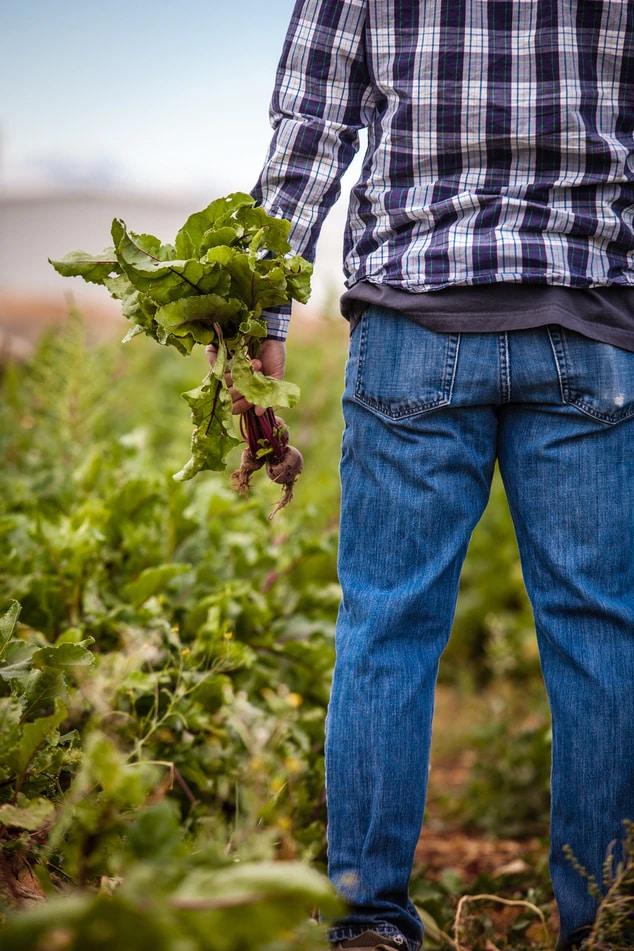 Our Food Future Farmer